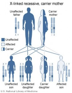 inherit color blindness genetics causes