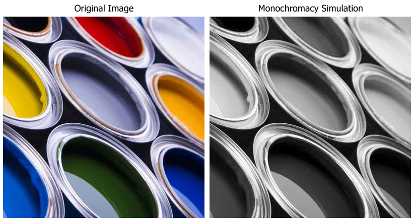 total color blindness monochromacy